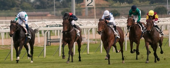 Can You Make Money From Horse Racing?