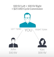 The Team Commission structure of Talk Fusion