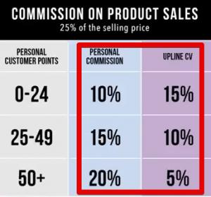 5LINX Compensation plan, customer sales profits