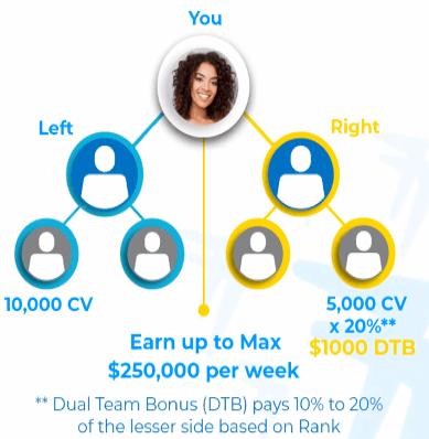 How does the Ibuumerang dual team bonus work