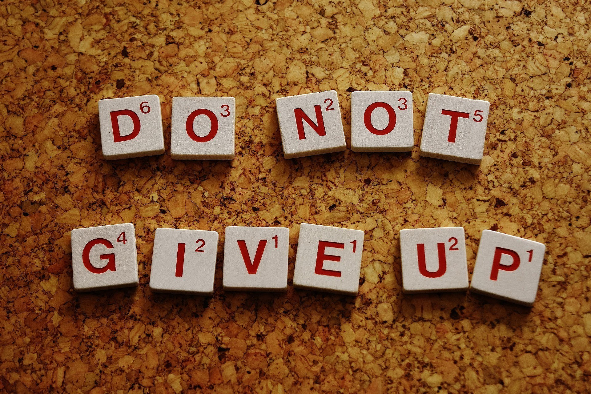 How to become a success in your life, do not give up