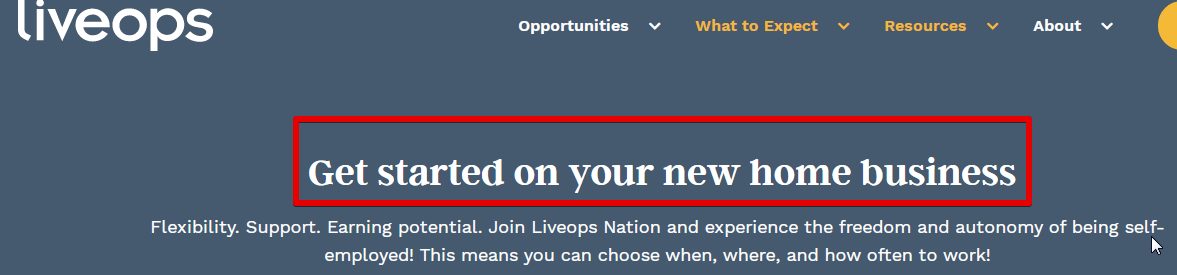 Liveops is misleading, it's not a business