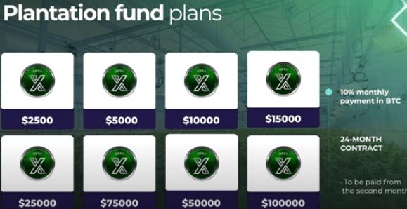 Xifra lifestyle compensation plan